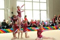 Турнир по художественной гимнастике (2014)